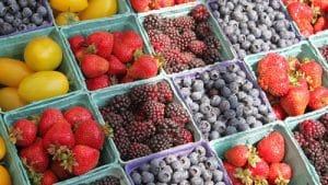 8 tipů, kde zakoupit kvalitní zdravé potraviny on-line