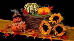 Výhodné tipy na podzimní výzdobu